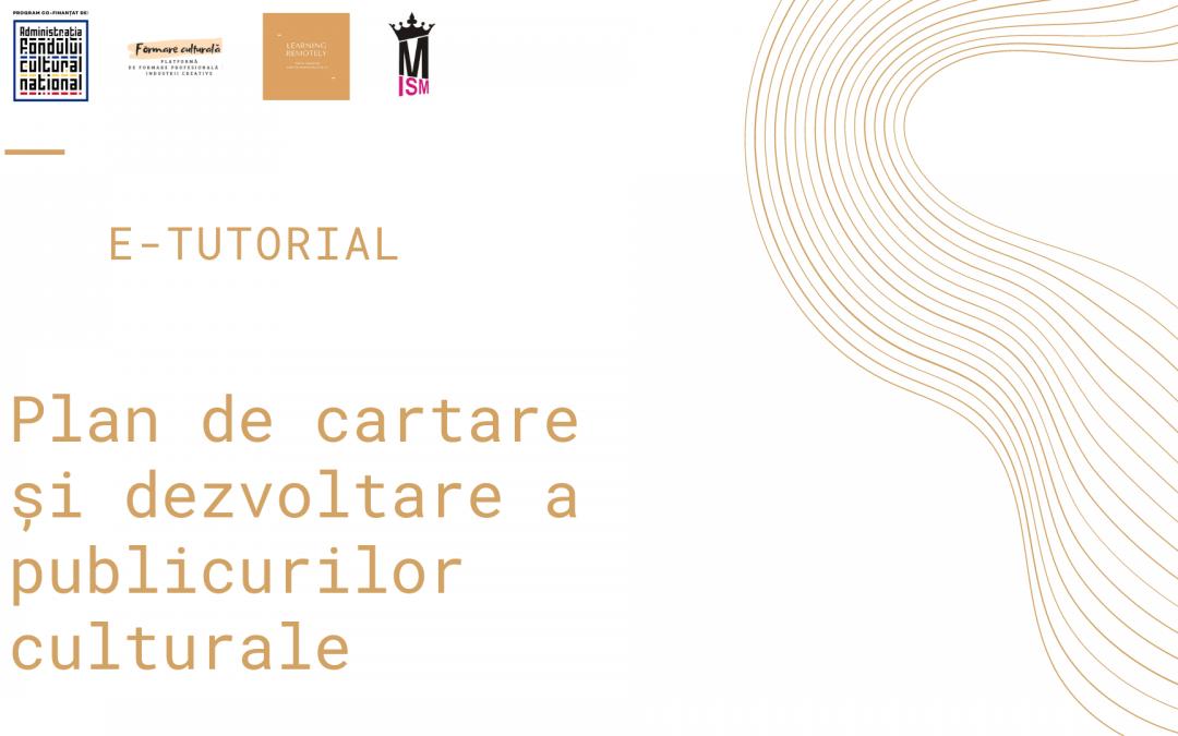 E-tutorial FCA. Plan de cartare și dezvoltare a publicurilor culturale